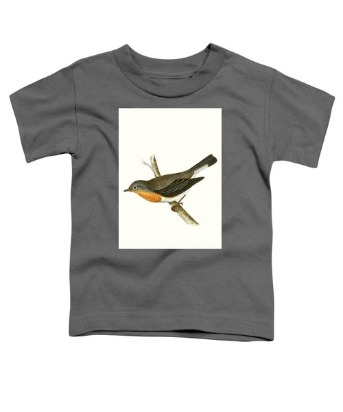 Red Breasted Flycatcher Toddler T-Shirt by English School