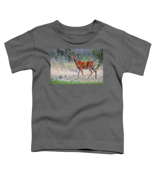 Toddler T-Shirt featuring the photograph Red Bucks 1 by Antonio Romero