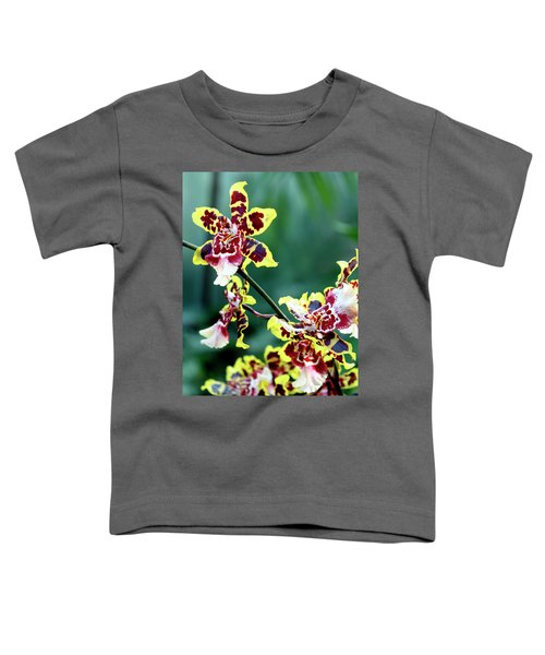 Striped Maroon And Yellow Orchid Toddler T-Shirt