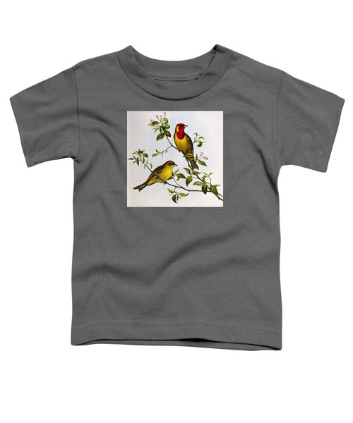 Red Headed Bunting Toddler T-Shirt by John Gould