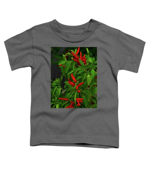 Red Hot Chili Peppers Toddler T-Shirt