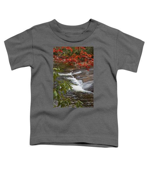 Red Leaf Falls Toddler T-Shirt