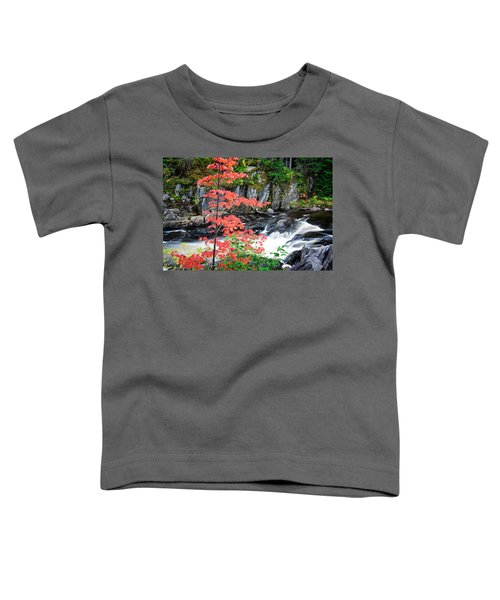 Red Maple Gulf Hagas Me. Toddler T-Shirt