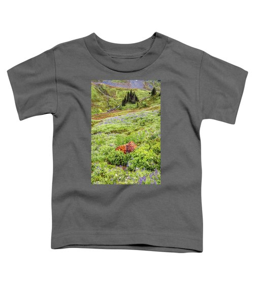 Red Rock Of Rainier Toddler T-Shirt