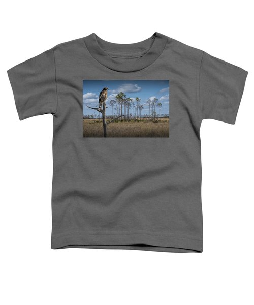 Red Shouldered Hawk In The Florida Everglades Toddler T-Shirt