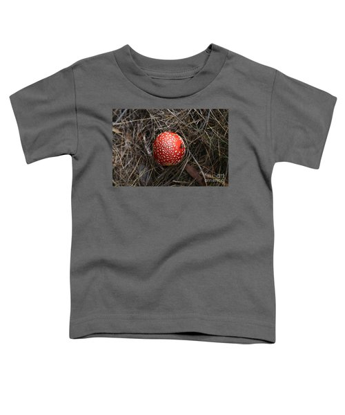 Red Spotty Toadstool Toddler T-Shirt by Nareeta Martin