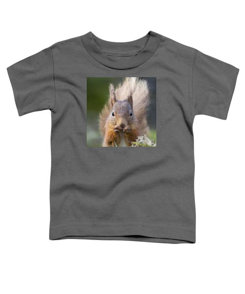 Red Squirrel - Scottish Highlands #28 Toddler T-Shirt