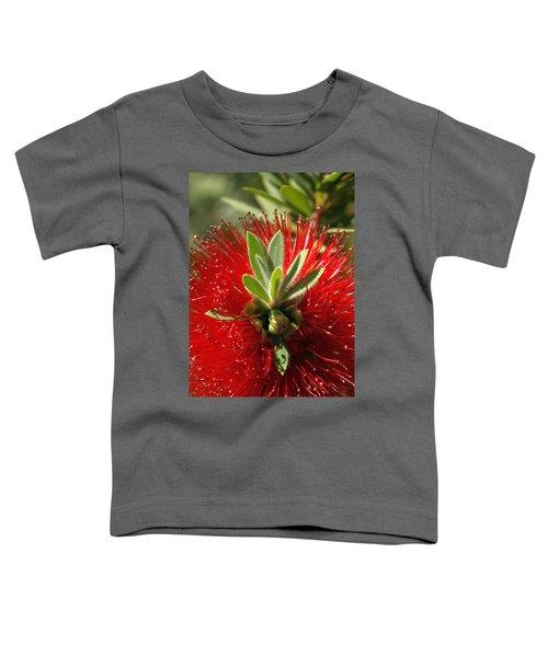 Red Surprise Toddler T-Shirt