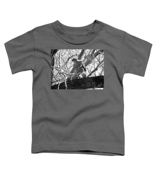 Red Tail Hawk In Black And White Toddler T-Shirt