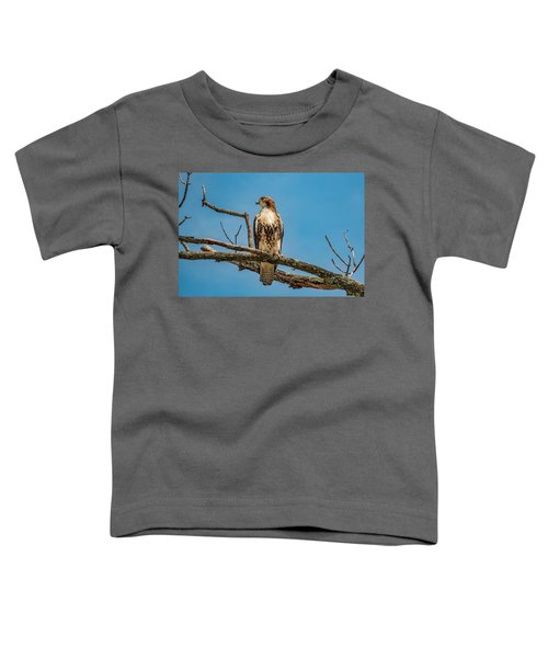 Red Tail Hawk Perched Toddler T-Shirt