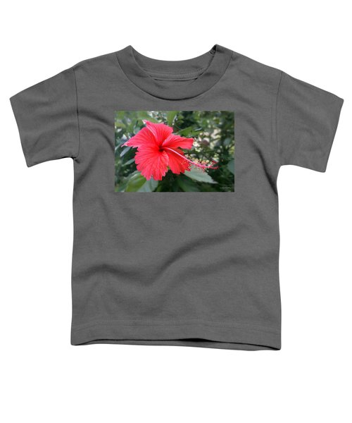 Red-tailed Flower Portrait Toddler T-Shirt