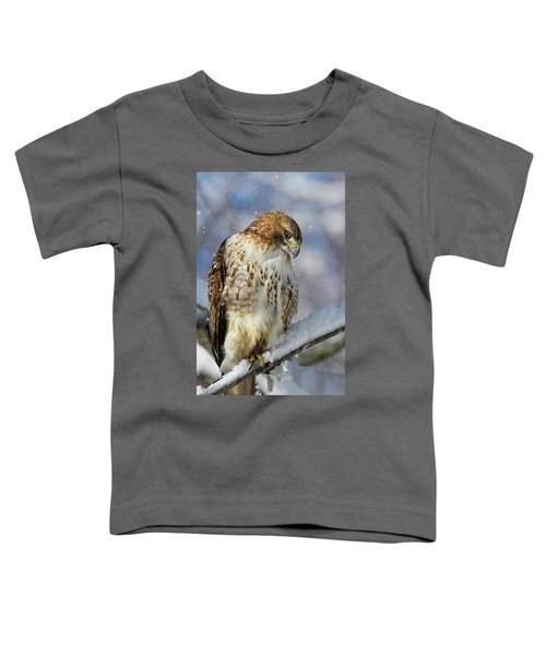 Red Tailed Hawk, Glamour Pose Toddler T-Shirt