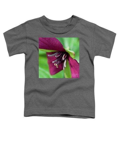 Red Trillium.. Toddler T-Shirt