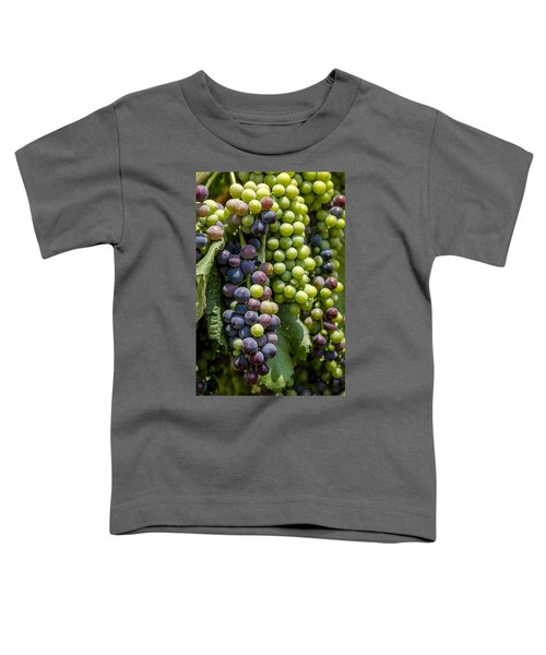 Red Wine Grapes In The Vineyard Toddler T-Shirt