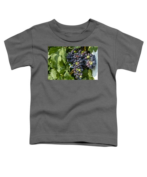 Red Wine Grapes On The Vine Toddler T-Shirt