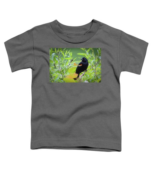 Red Wing In The Marsh Toddler T-Shirt