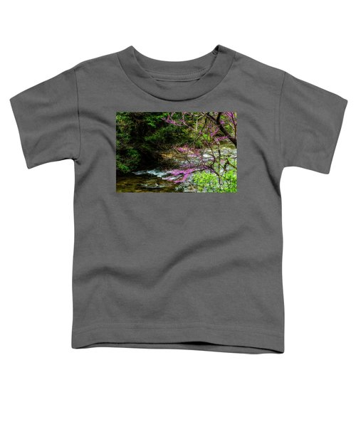 Redbud And River Toddler T-Shirt