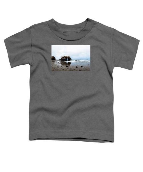 Redo Of Natural Bridges Toddler T-Shirt