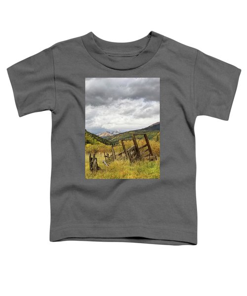 Remains Of A Corral Toddler T-Shirt