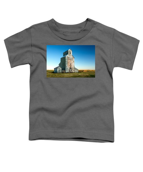 Remember When Toddler T-Shirt