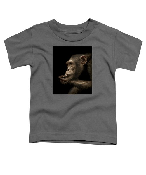 Reminisce Toddler T-Shirt by Paul Neville