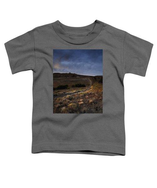 Reno Sunset Toddler T-Shirt