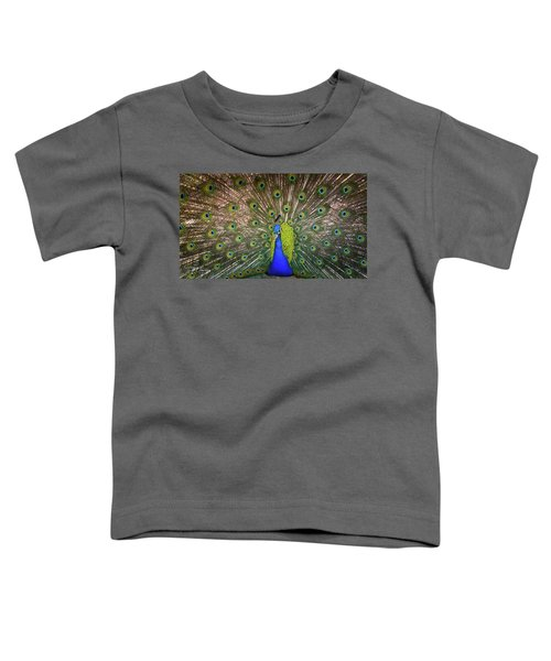 Resplendant Toddler T-Shirt