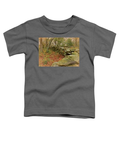 Reverie With Stone Toddler T-Shirt