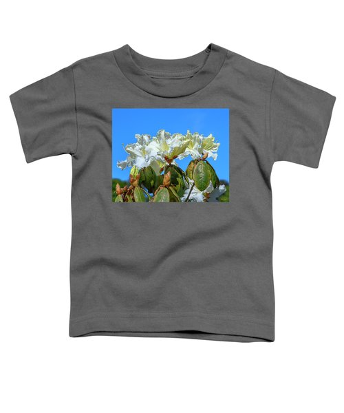 Rhododendron Ciliicalyx Dthn0213 Toddler T-Shirt