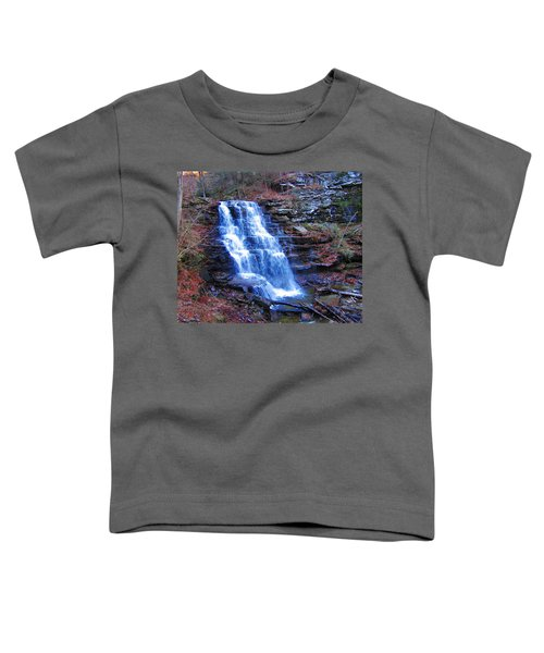 Ricketts Glen Waterfall 3941  Toddler T-Shirt