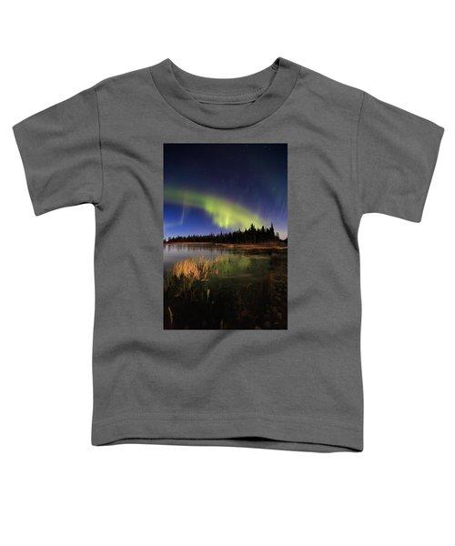 Ridgway Toddler T-Shirt