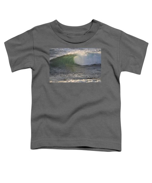 Rip Curl Toddler T-Shirt