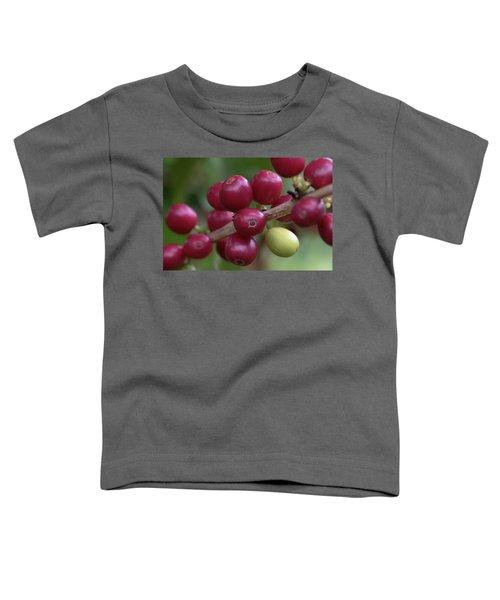 Ripe Kona Coffee Cherries Toddler T-Shirt
