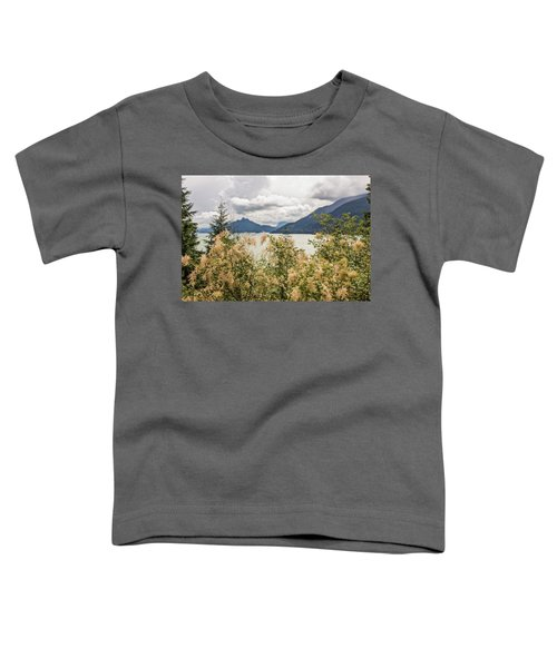 Road With A View Toddler T-Shirt