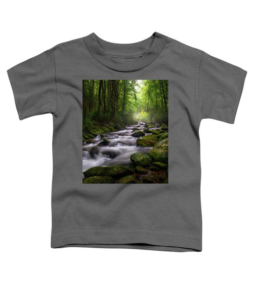 Great Smoky Mountains Roaring Fork Gatlinburg Tennessee Toddler T-Shirt