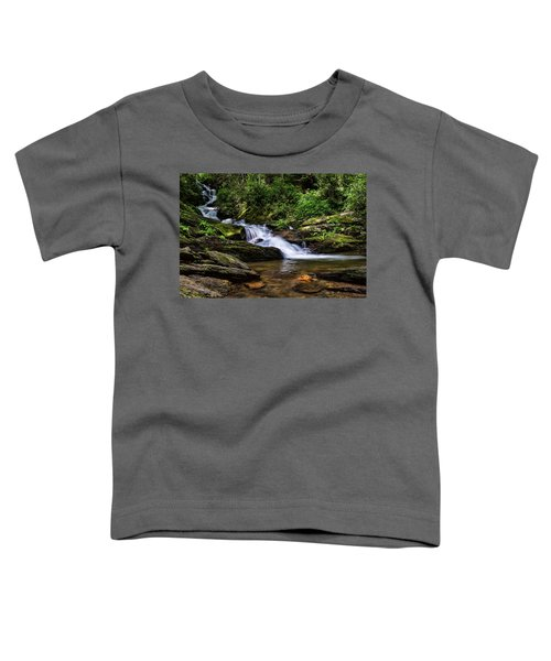 Roaring Fork Waterfall Toddler T-Shirt