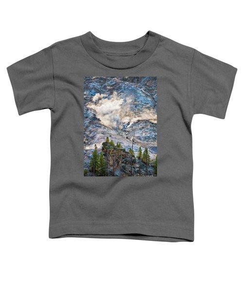 Roaring Mountain Toddler T-Shirt
