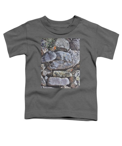 Robins Toddler T-Shirt