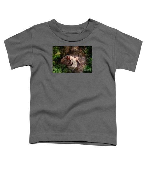 Rock Bathing Toddler T-Shirt