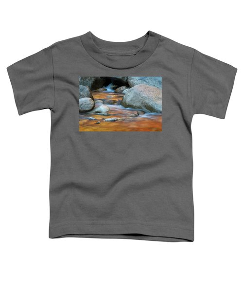 Rock Cave Reflection Nh Toddler T-Shirt