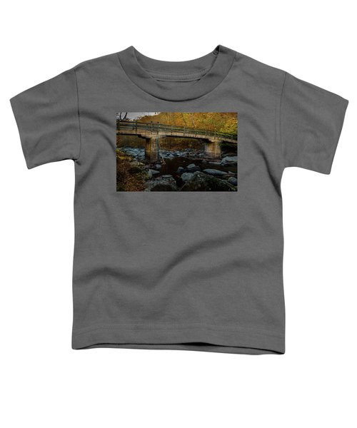 Rock Creek Park Bridge Toddler T-Shirt