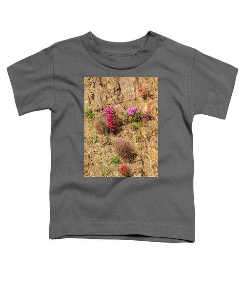 Rock Cutting 1 Toddler T-Shirt by Werner Padarin