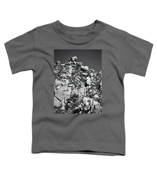 Rock Face Sandia Mountain Toddler T-Shirt