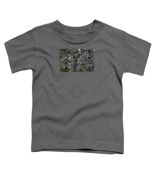 Rock Lichen Surface Toddler T-Shirt by Nareeta Martin
