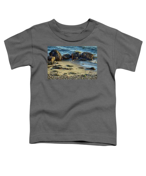 Rocky Formation Toddler T-Shirt