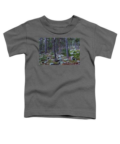 Toddler T-Shirt featuring the photograph Rocky Nature Landscape by James BO Insogna