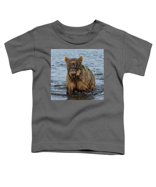 Rogue Bear  Toddler T-Shirt