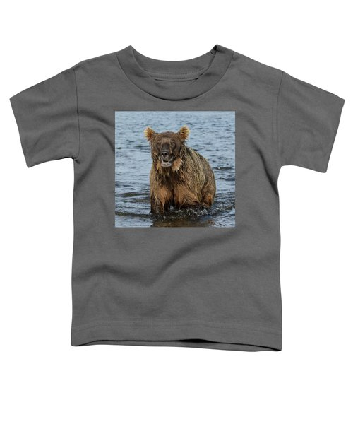 Rogue Bear  Toddler T-Shirt