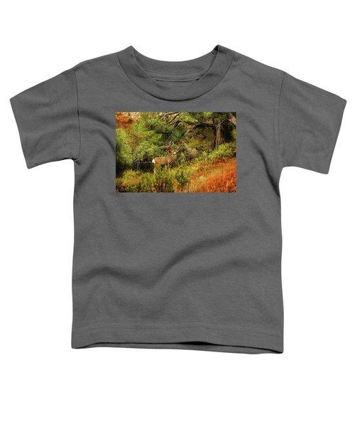 Roosevelt Deer Toddler T-Shirt