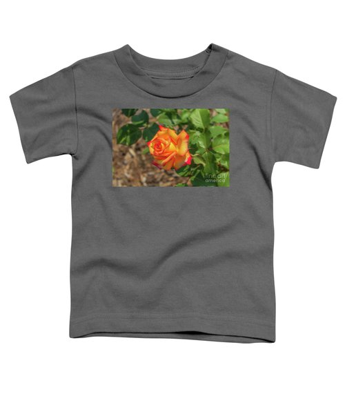Rosa Peace Toddler T-Shirt
